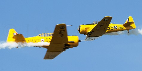 Photo of the Week – North American T-6 Texan Dogfight