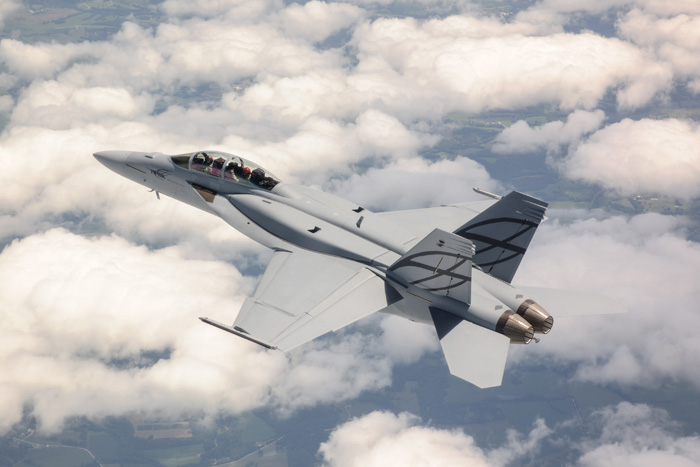 http://www.flightstory.net/wp-content/uploads/advanced-super-hornet_3.jpg